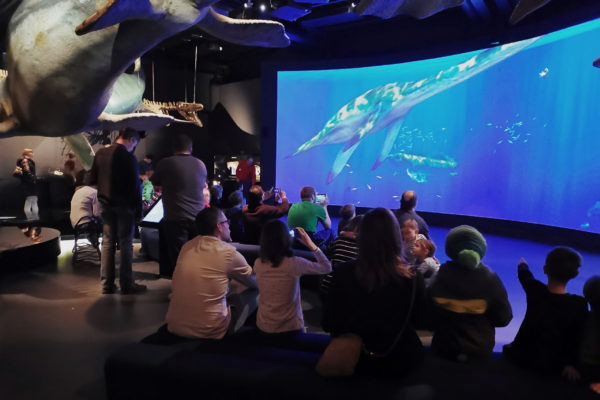Museumsbesucher schauen sich sitzend das Paleoaquarium an